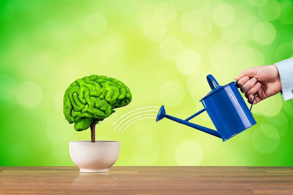Kako trenirati svoju memoriju